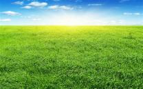 image prairie.jpeg (41.8kB)