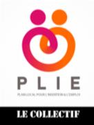 collectifdesparticipantsduplie_logo_collectif-plie.png