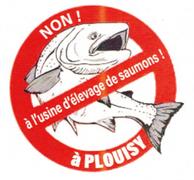 collectifdouriougouez_logo-douriou-gouez.png