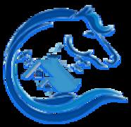 forsanelmadina_فرسان-المدينة-logo-صفحة.png