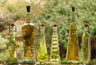 laboratoirepermaculturel_infused-cooking-oils-horiz.jpg