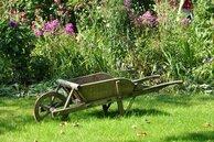 lewikiducampusvertdazur_wheelbarrow-g460a12931_1920.jpg