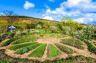 reseaudejardins_jardin.jpg