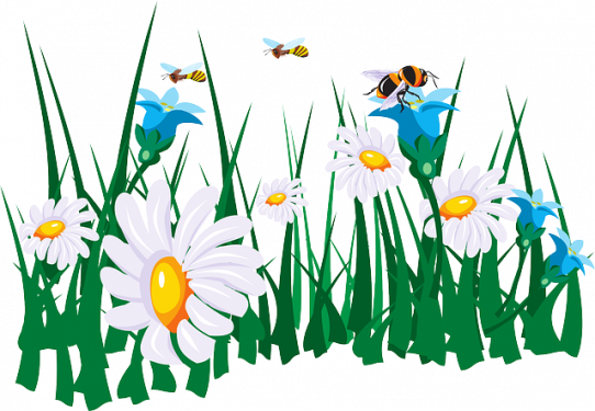 image flowers45786_640.png (0.2MB)