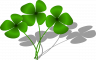 image clovers161400_640.png (0.2MB)