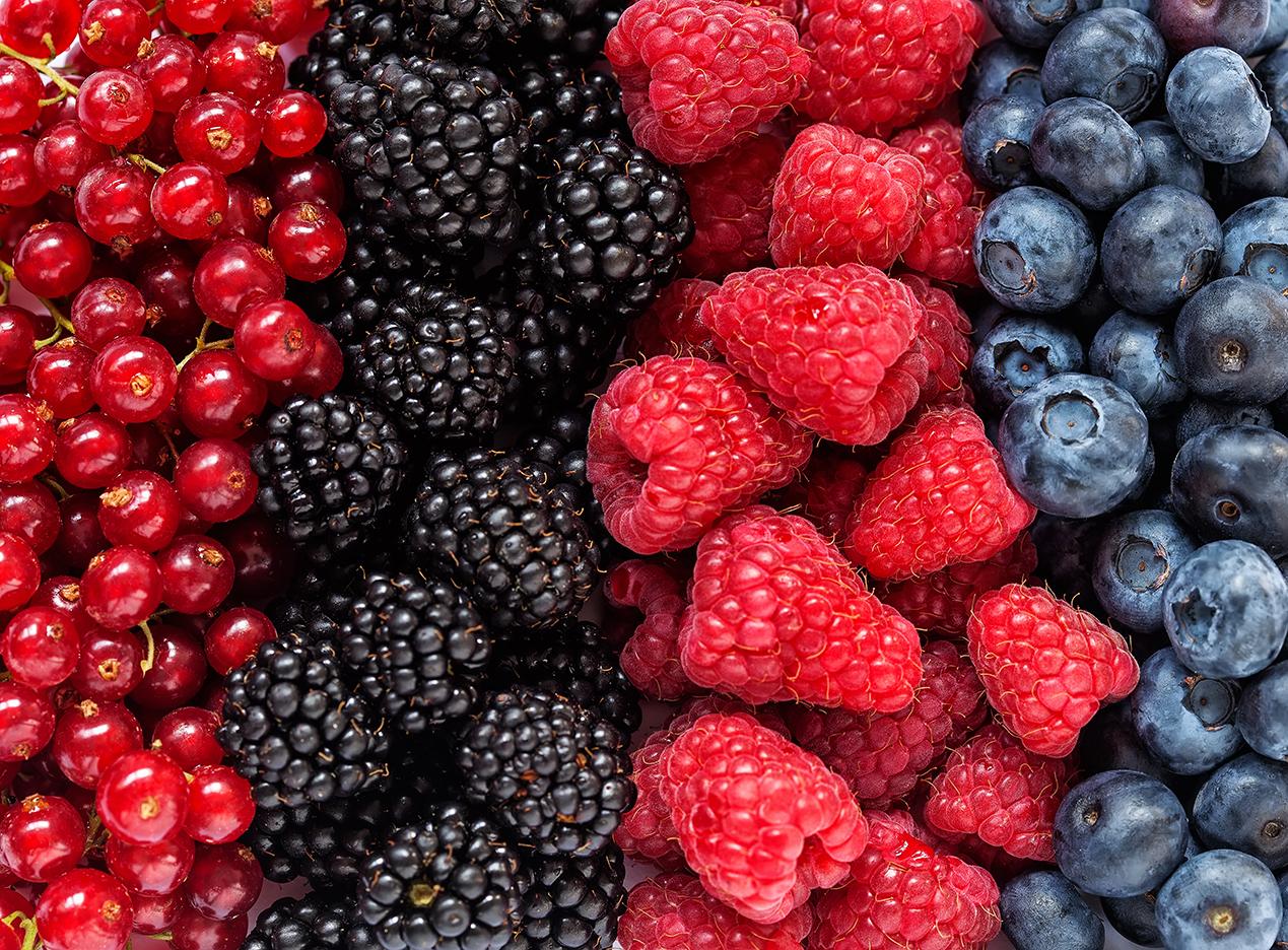image fruits_rouges.jpg (1.5MB)